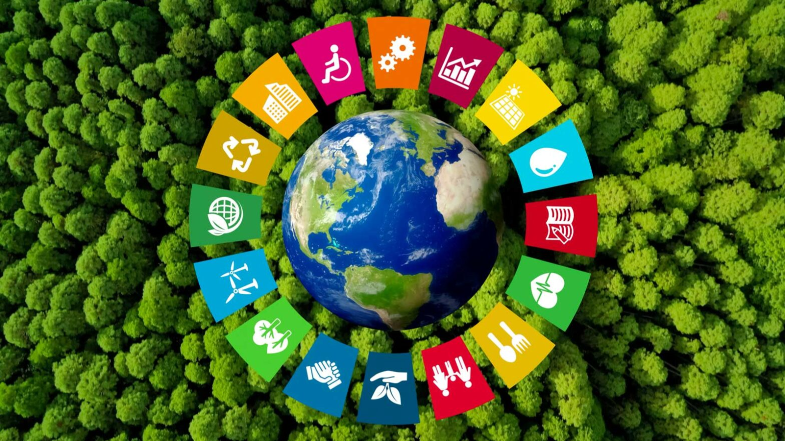 Semaine du développement durable 2021